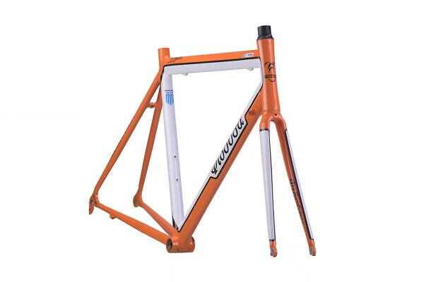 FRAME-KALIVAS-clear-600x400 Gianni's alloy race bike